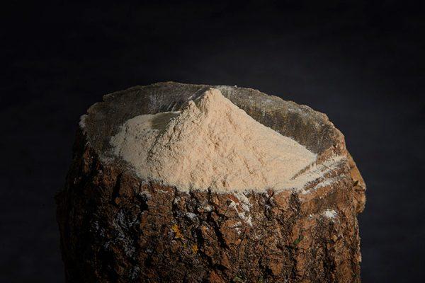 Polvo Baobab