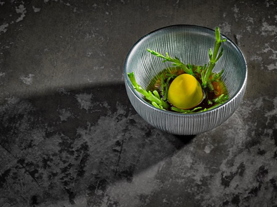 Salicornia - cúrcuma